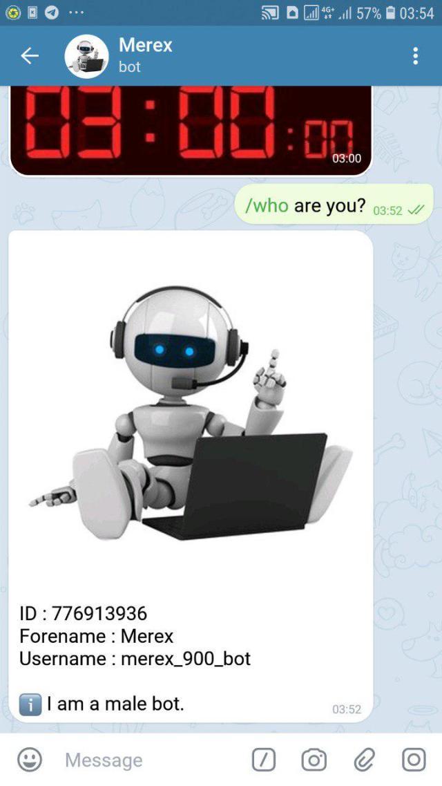 Python : Telegram Bot Webhook Handler : A Multi-Bot/Multi